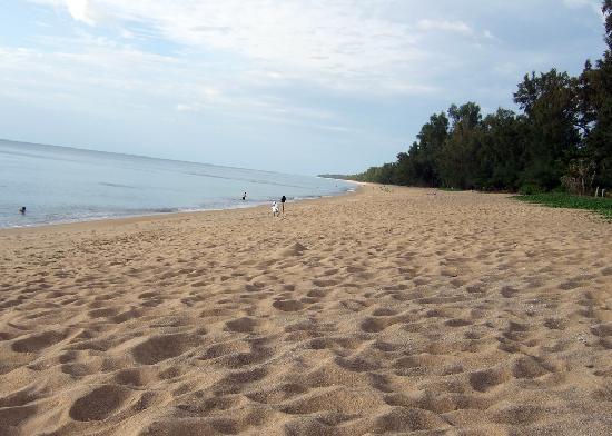 Holiday Inn Phuket Mai Khao Beach Resort : Hotel beach