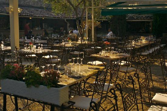 Le jardin photo de restaurant le jardin cannes for Restaurant le jardin antibes