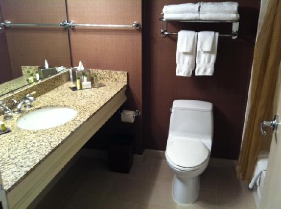 DoubleTree by Hilton Chicago - Arlington Heights : bathroom