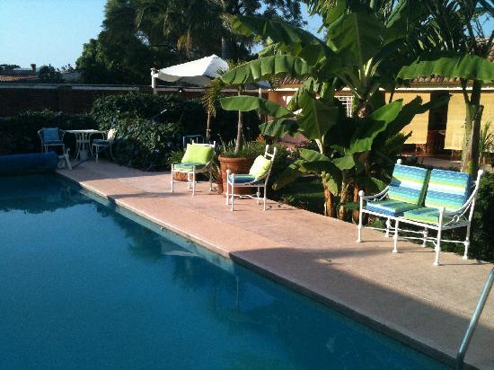 La Paloma Bed and Breakfast: Pool