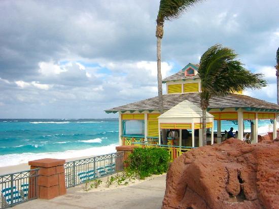 Comfort Suites Paradise Island: couleur