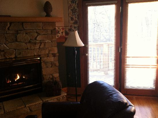 Iris Inn: Cozy fireplace