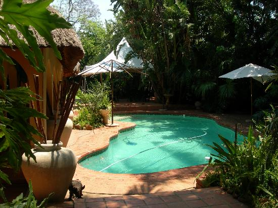 Bohemian Rhapsody Guest House  &  InnTshwane Lodge: The pool area