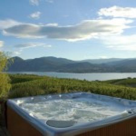 Therapy Vineyards & Guesthouse : where to enjoy the view