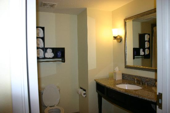 Holiday Inn Express Hotel & Suites Saint Augustine North: Bathroom