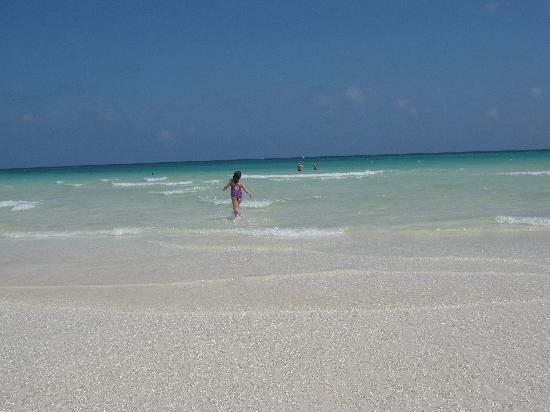 Iberostar Mojito: magnifique plage