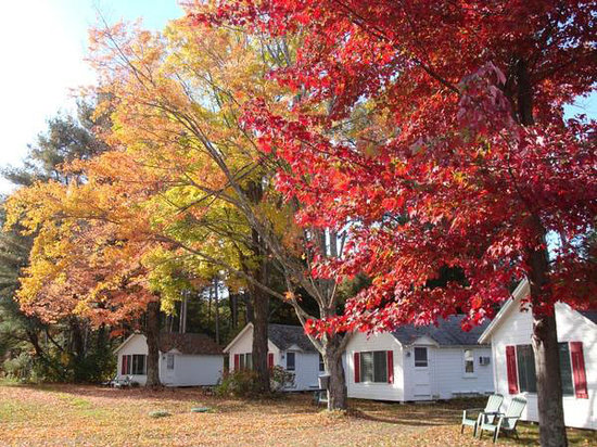 Cozy Cottages & Otter Valley Winery: Fall at Cozy Cottages
