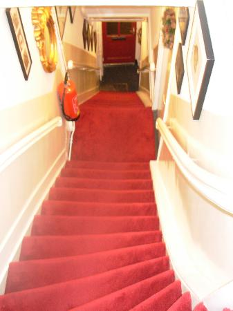 Boogaard's Bed and Breakfast: The Stairway down to the breakfast room