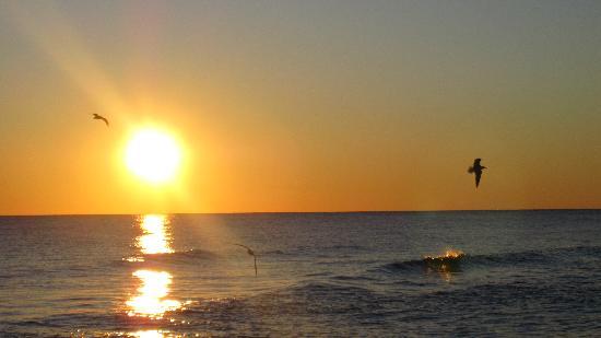 Candlewood Suites Destin-Sandestin: Destin sunset