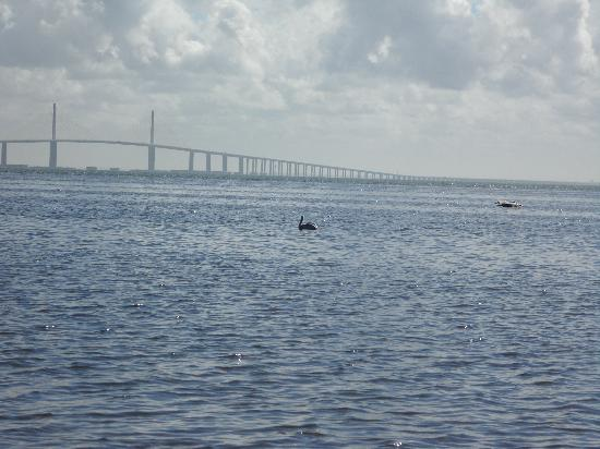 Fort De Soto Park: Bridge