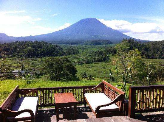 Bali Asli Restaurant: What a view!