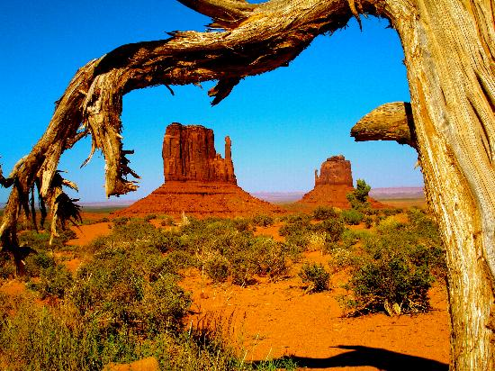 Majestic Monument Valley Touring Co.: Nizhoni (beautiful) Monument Valley!