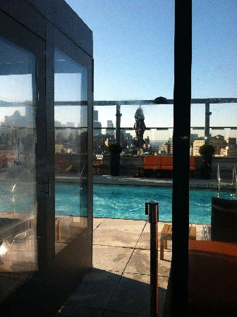 Gansevoort Meatpacking NYC: Pool