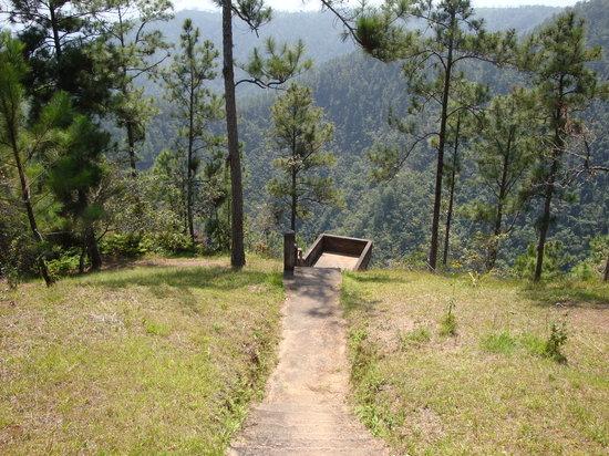 1000 Foot Falls : Viewpoint platform