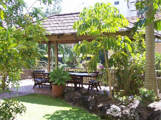 Warringa Surf Apartments: Barbeque Area