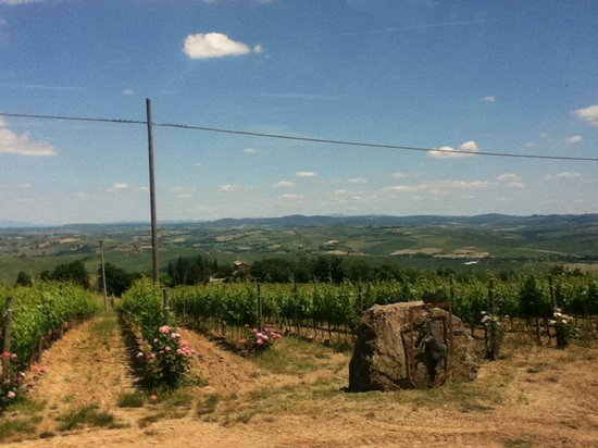 FlorenceForFun: You cannot beat the real wine country.