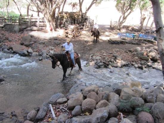 Makani Olu Ranch trail ride