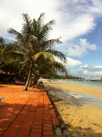 Sunshine Beach Hotel : seriously 20 steps, you can jump into the sea