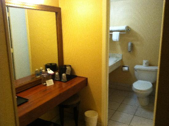 Park Inn: Bathroom/vanity area