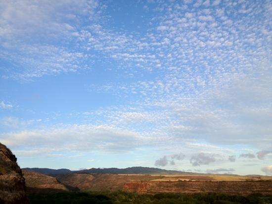 Inn Waimea: View from the back porch of the Ishihara Cottage.