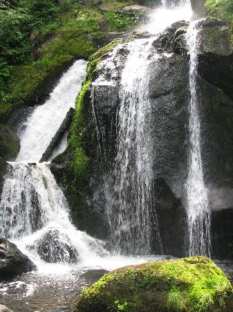 Triberger Waterfall: Highest Water Fall in Germany