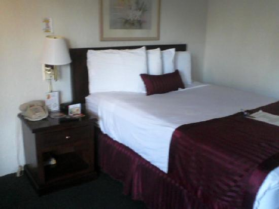 Kings Inn Anaheim: Super comfy bed