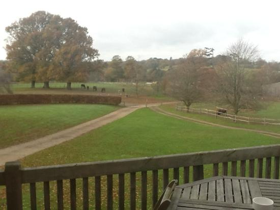 Three Chimneys Farm: View from the balcony