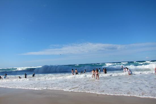 Surfer's Paradise Beach : Surfer Paradise