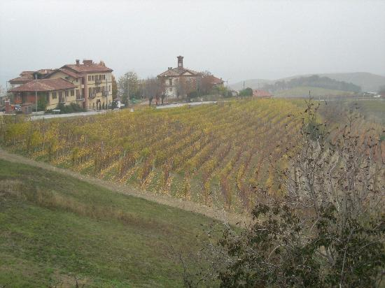 Serralunga d'Alba, Italy: View from the restaurant