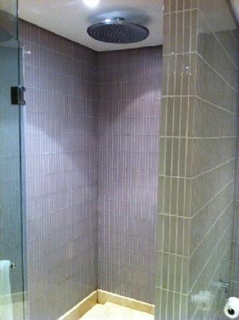 W Doha: Fancy shower