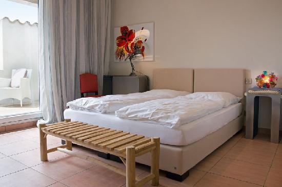 Petit Hotel Marseillan: Figuier with roof terrace