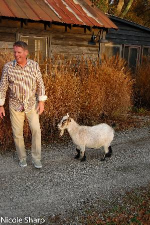 Inn at Serenbe: The friendly goat