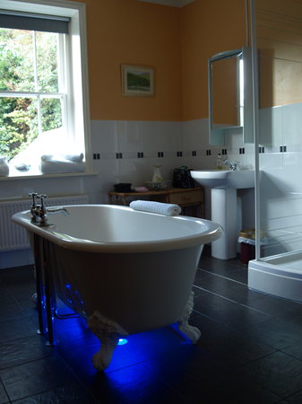 The Old Rectory on the Lake: Craig Goch Bathroom