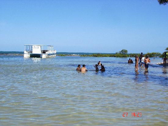Carneiros Beach : La Playa
