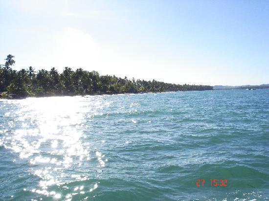 Carneiros Beach: Desde el catamaran