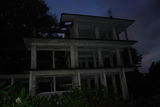 Rainforest Inn: The construction