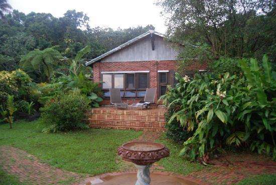 Rainforest Inn: Room exterior