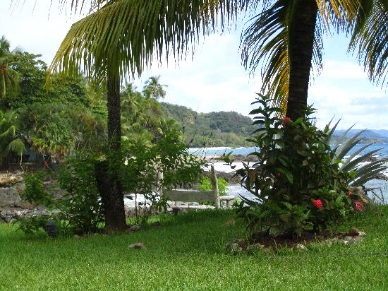 Hotel Amor de Mar: view