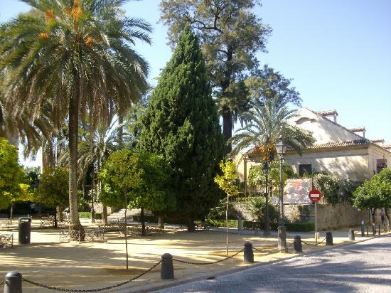 Cordoue, Espagne : Campo Santo de Los Mártires