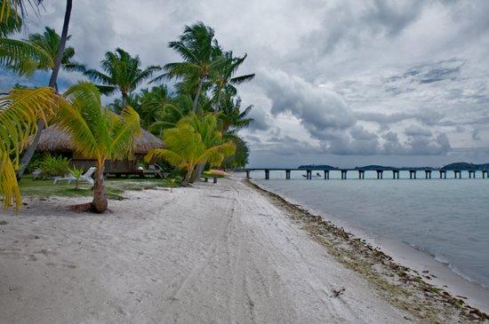 Eden Beach Hotel Bora Bora: Sergey Vakhov