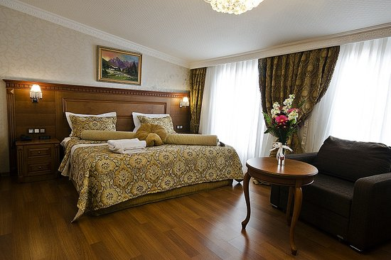 Senatus Suites: Guest Room
