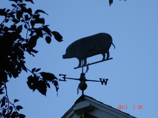 Brimblecomb Hill Bed & Breakfast: the weather vane at Brimblecomb