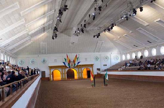 Fundación Real Escuela Andaluza del Arte Ecuestre: Halle