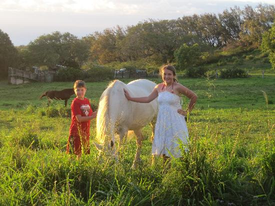 Puakea Ranch: Kids always wanted to be with the horses