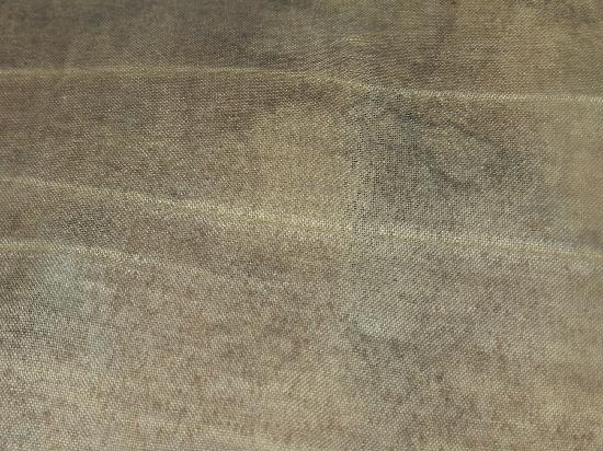 Falling Waters: Mold covered dirty bedding