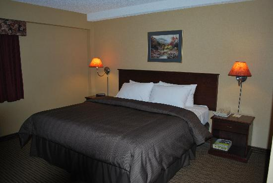 Days Inn - Calgary South: One Queen Bed
