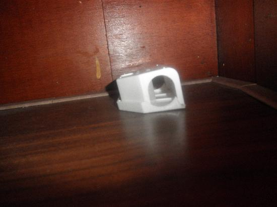 Hotel Manofa : Rats trap under the beds