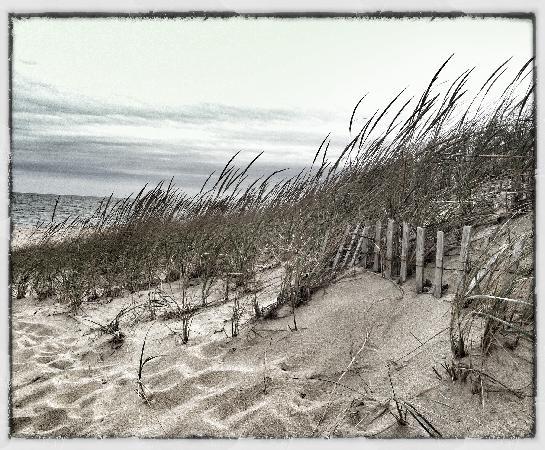 Brass Lantern Inn : on the beach