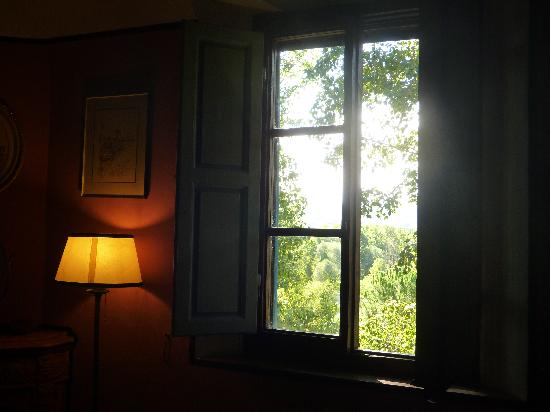 Fattoria Bassetto: From our room