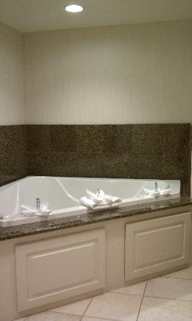Jacuzzi Tub Picture Of Hampton Inn Amp Suites Nashville